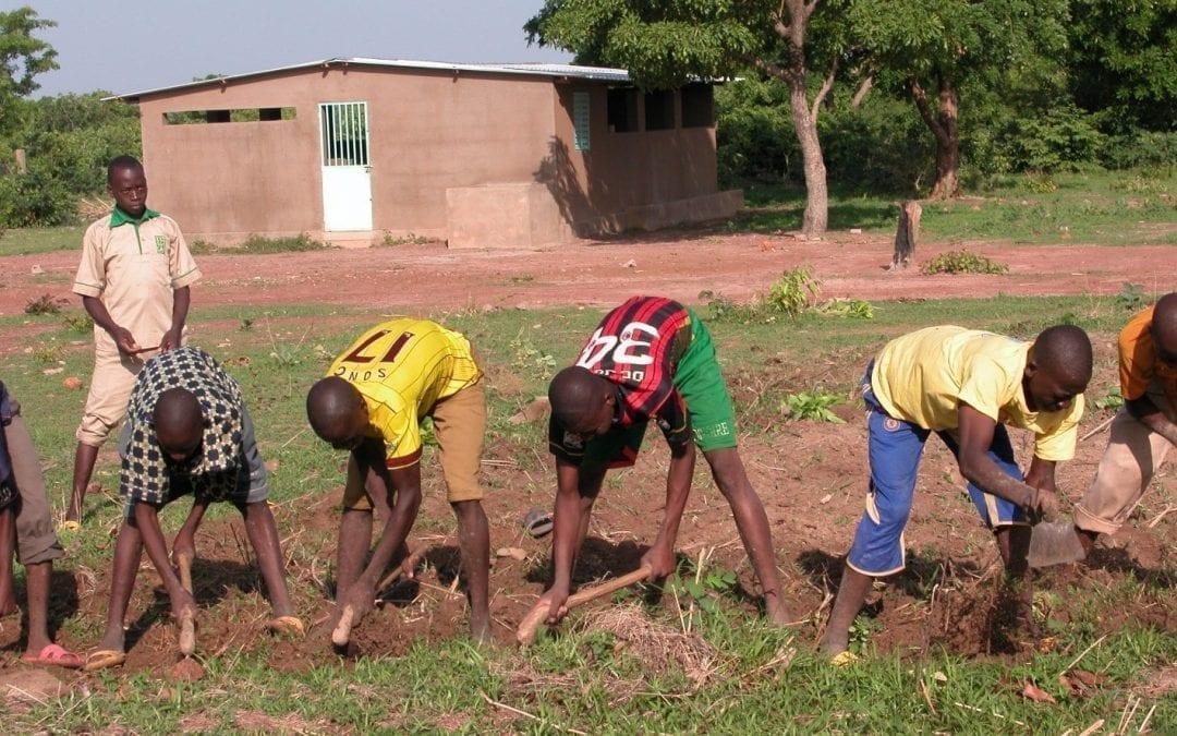 Fachoberschule für Landwirtschaft (LAP)