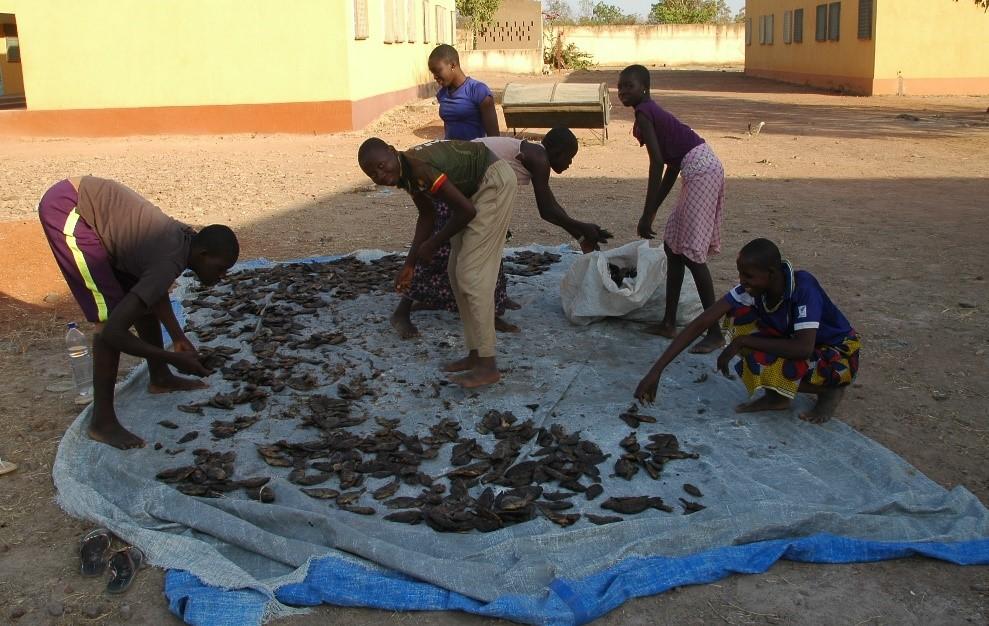 Blog: cotton farmers