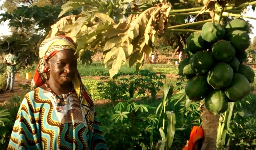 Het verhaal van de dame 'Zoenabo'